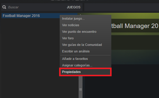 Steam_Properties_Spanish.png